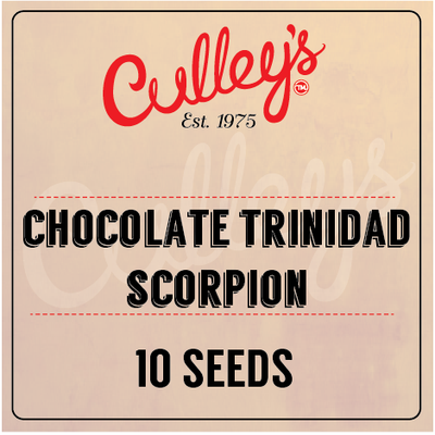 Chocolate Trinidad Scorpion Chilli Seeds