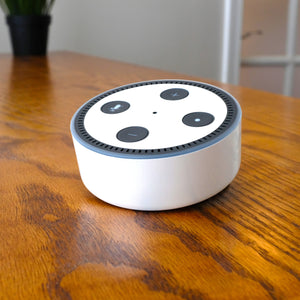 Amazon Echo Dot 2nd Gen Skins