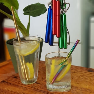 Suck It Up Telescopic Straws - The Vale Eco Packs