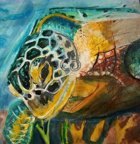 DM4 - The Turtle - 12x15x2 - Watercolor, Pastel, Gel Pen by Daria Martinez - currents-gallery