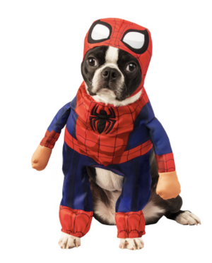 Walking Spiderman Pet Costume