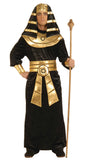 Egyptian Pharoah Costume
