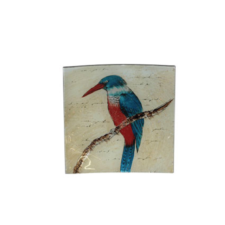 KINGFISHER SQUARE GLASS PLATE