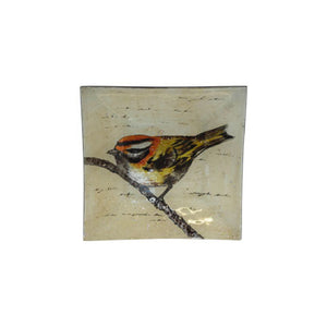BIRD ON BRANCH SQUARE GLASS PLATE