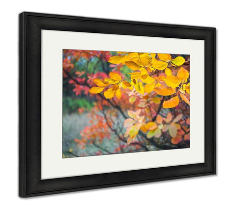 Framed Print, With Autumn Leaves