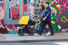 Load image into Gallery viewer, Bugaboo, Bee 6 Carrycot Complete