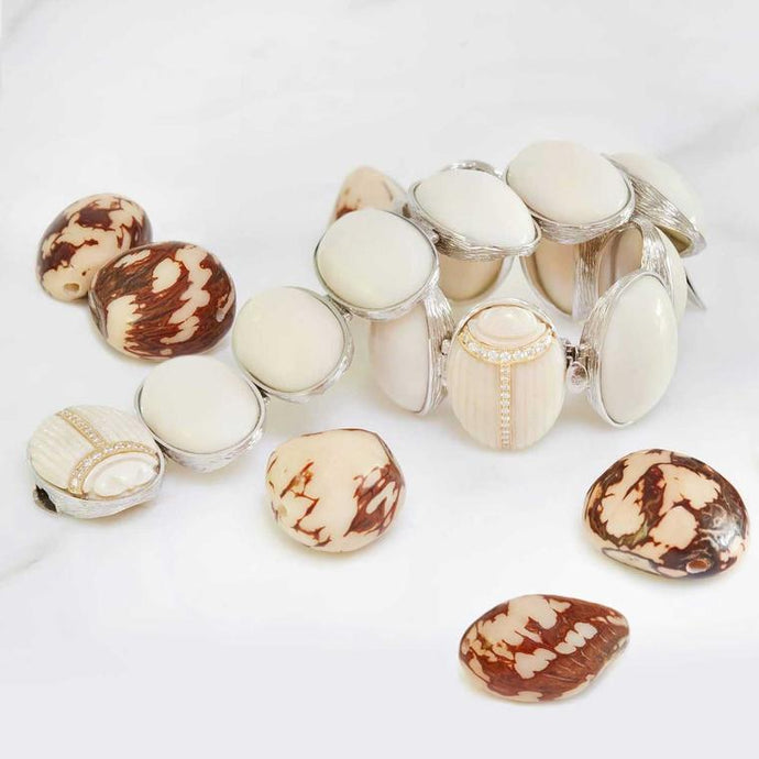 Vegetable Ivory - the Tagua nut