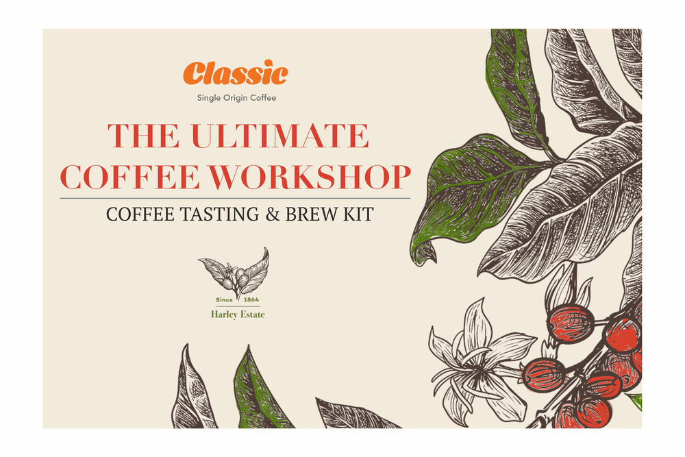 The Ultimate Coffee Workshop