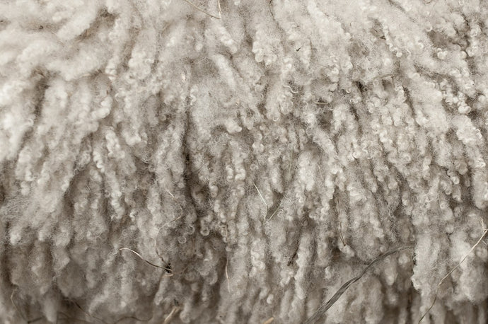 Why Our Rugs Are 100% Wool and NOT Synthetic