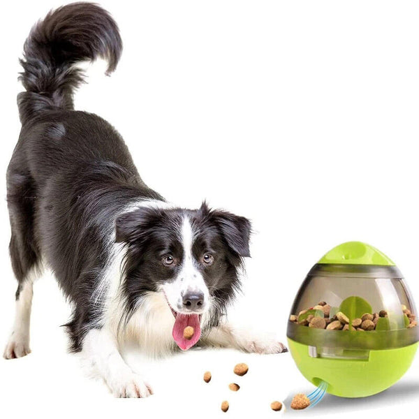 Interactive Pet Slow Feeder Treat Ball