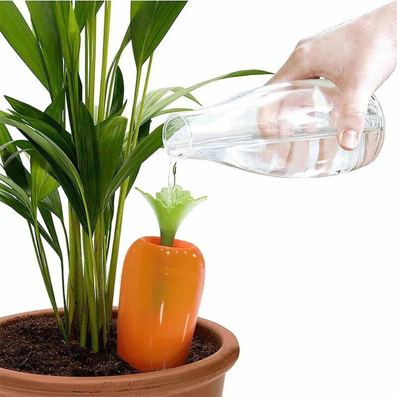 Carrot Self-Watering Device