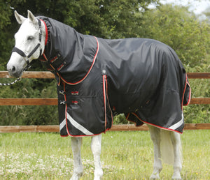 Buster Dual Complete 2 in 1 Turnout Rug