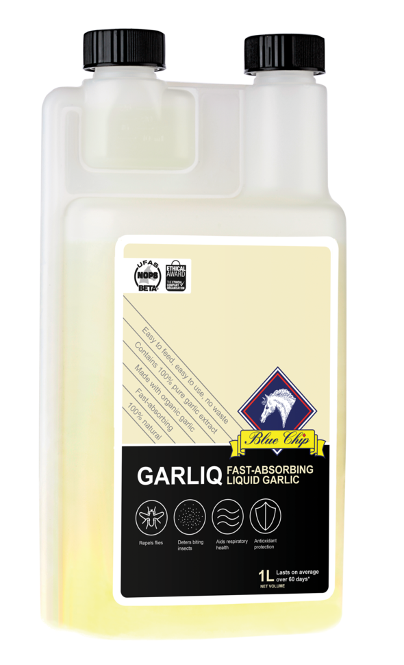 Blue Chip Liquid Garliq - Feeds2U