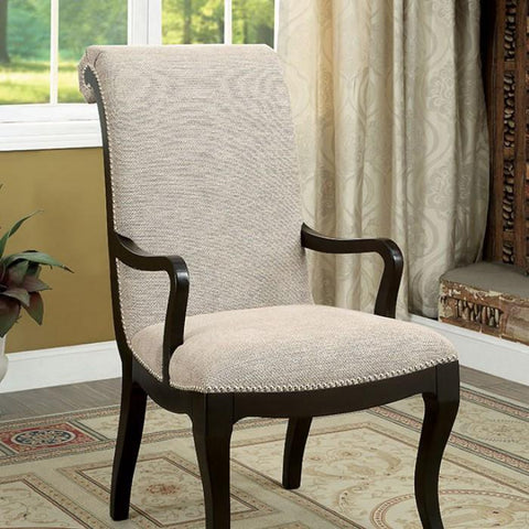 Denise Contemporary Style Arm chair