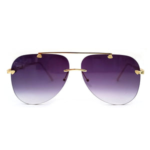 SG Apparel Havana sunglasses with tinted lenses