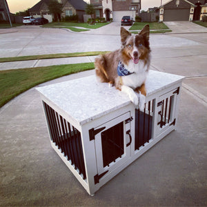 Metal Custom Double Dog Kennel