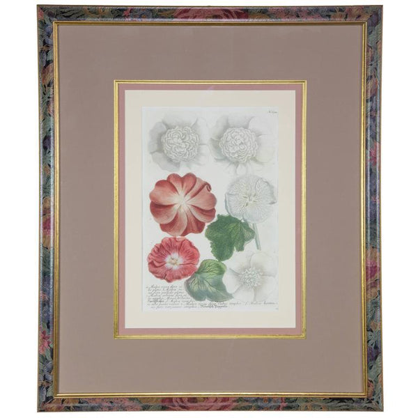 Hand-Colored Botanical Floral Framed Art Print