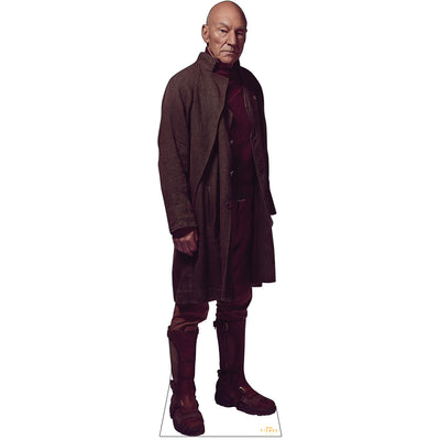 Star Trek: Picard Picard Standee | Official CBS Entertainment Store
