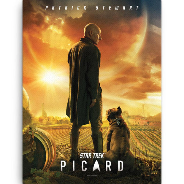 Star Trek: Picard Wrapped Canvas | Official CBS Entertainment Store