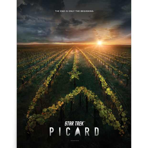 Star Trek: Picard Original Key Art Premium Poster | Official CBS Entertainment Store