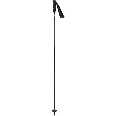 Swix Pole Excalibur Carbon Technology