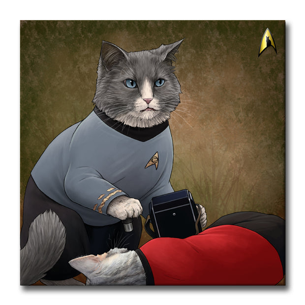Star Trek: The Original Series McCoy Cat Premium Satin Poster