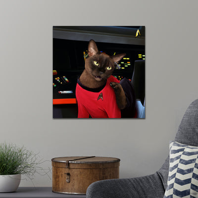 Star Trek: The Original Series Uhura Cat Premium Satin Poster