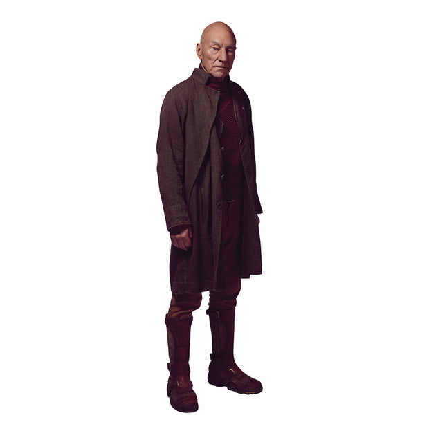 Star Trek: Picard Picard Wall Decal