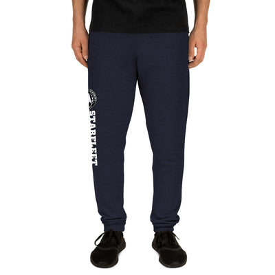 Star Trek Starfleet Academy Delta Adult Fleece Joggers