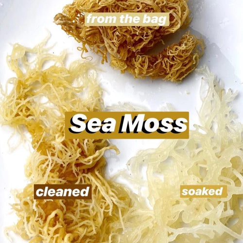 100% Organic Irish Sea Moss • Superfood Sun-Dried