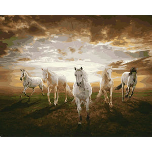 DIY Paint By Numbers Horses In The Clouds Painting Kit Paint By Numbers Calming Paints