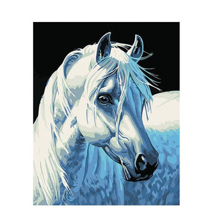 DIY Paint By Numbers Close Up Whit Horse Painting Kit Paint By Numbers Calming Paints
