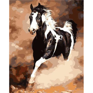 DIY Paint By Numbers Black And White Colt Painting Kit Paint By Numbers Calming Paints