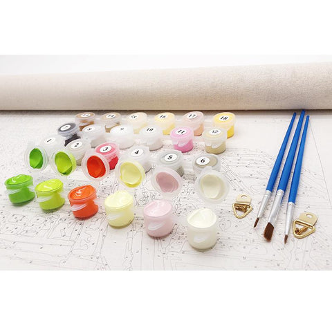 DIY Paint By Numbers White Horses Painting Kit Paint By Numbers thegiddyupstore