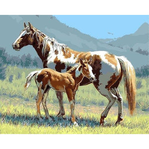 DIY Paint By Numbers Painted Horse And Colt Painting Kit Paint By Numbers Calming Paints