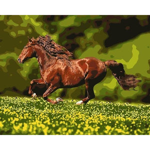 DIY Paint By Numbers Horse Galloping Through The Meadow Painting Kit Paint By Numbers Calming Paints