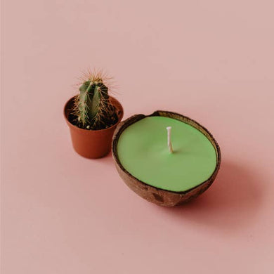 Coconut Shell Candle - Cactus and Jade
