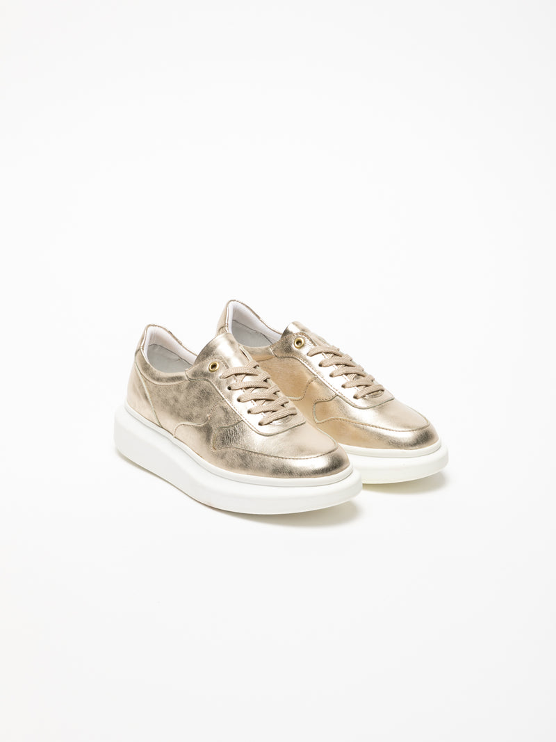 Gold Platform Trainers
