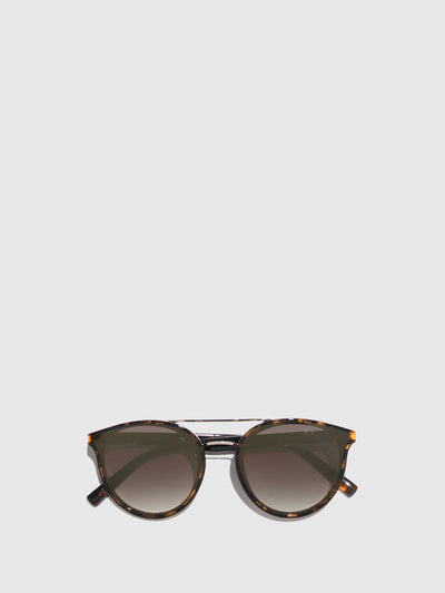 Fly London Brown Clubmaster Style Sunglasses