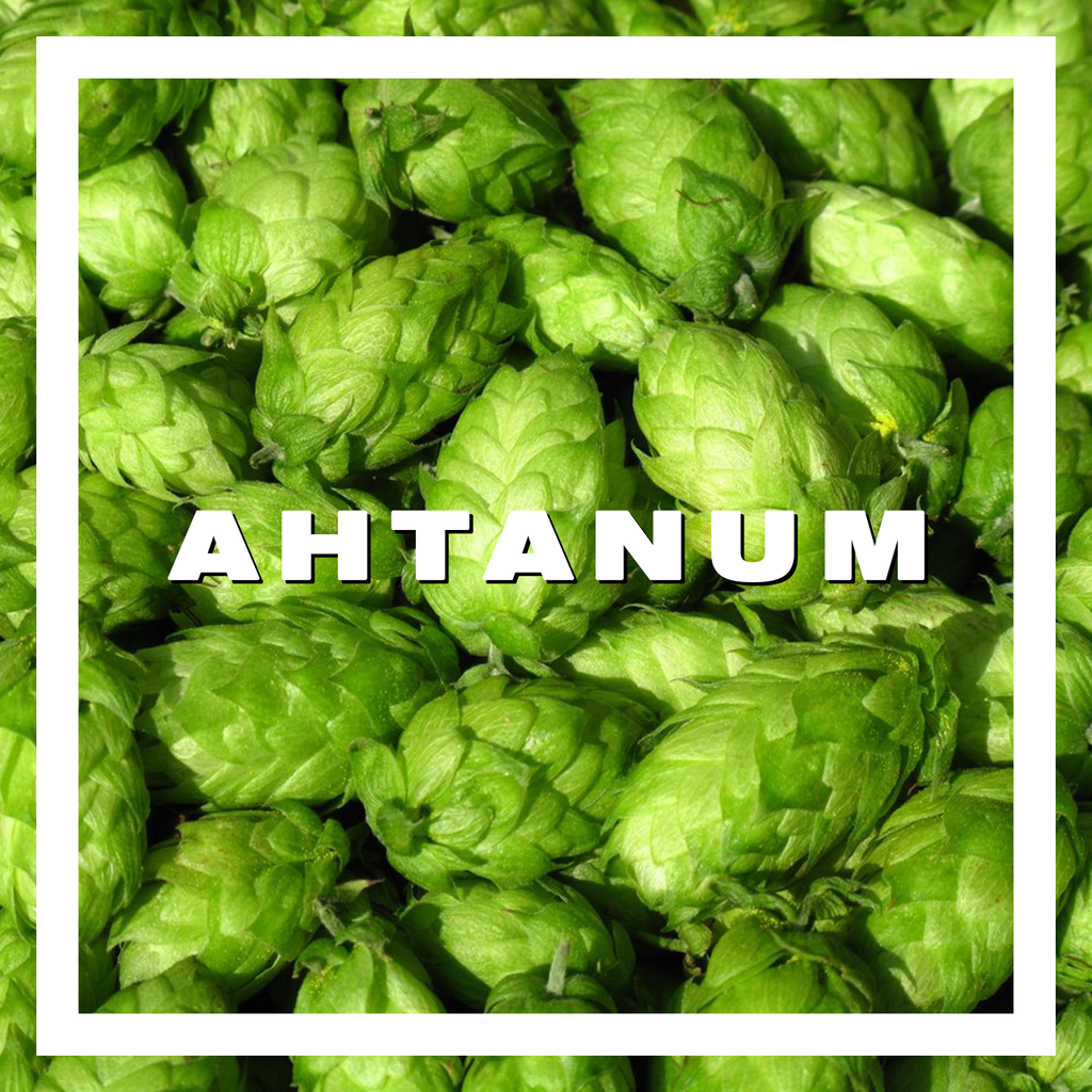 Hops Ahtanum Pellets 100gm