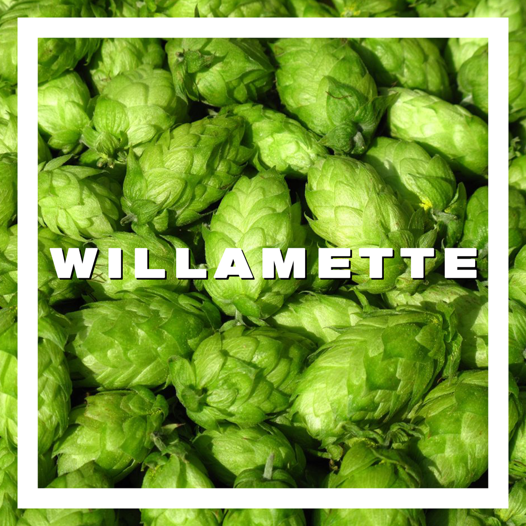 Hops Willamette Pellets 100gm