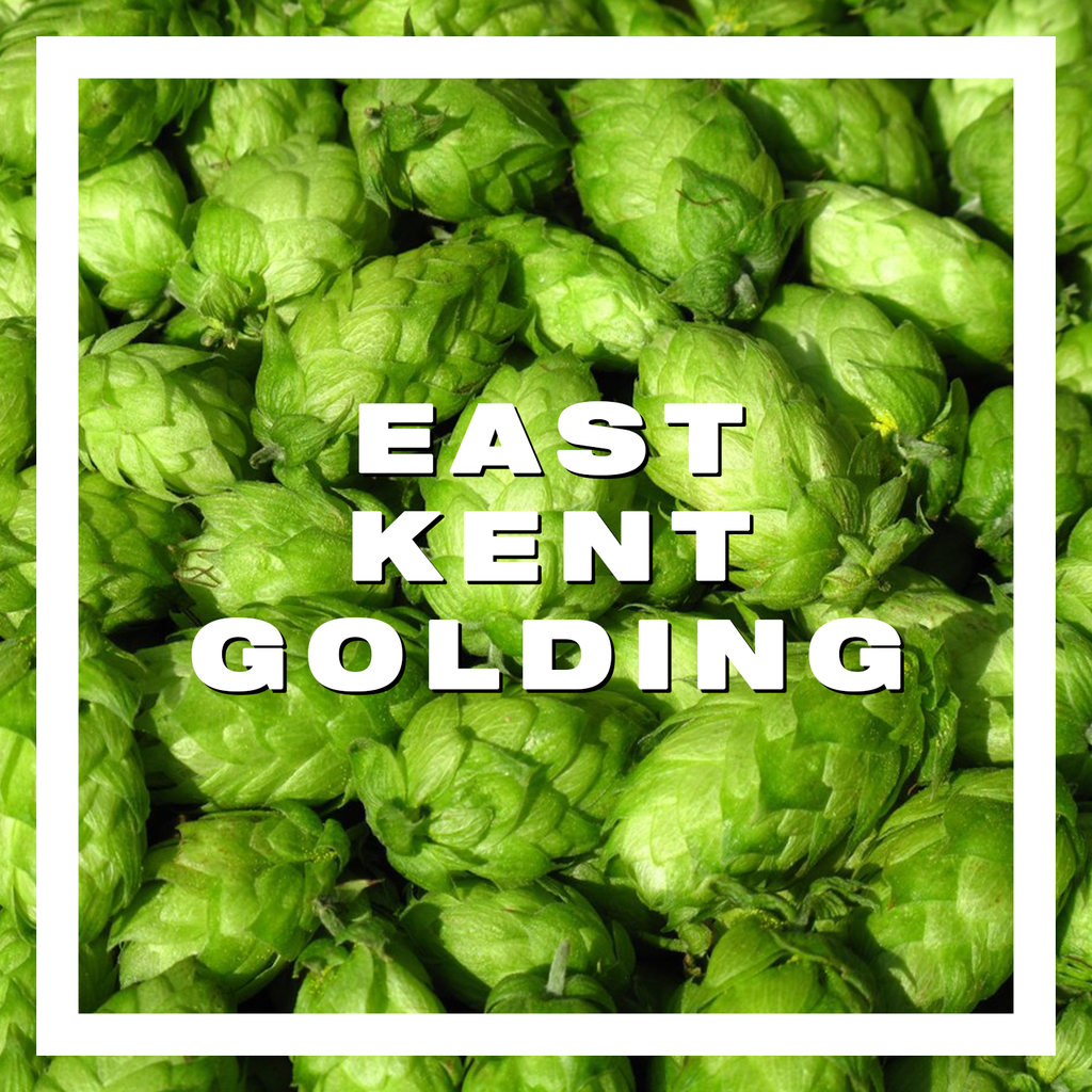 Hops East Kent Golding Pellets 100gm