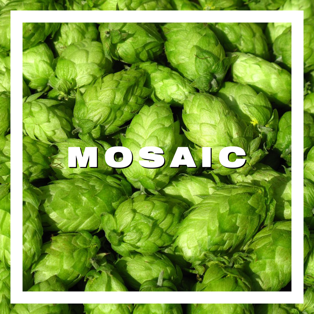 Hops Mosaic Pellets 100gm