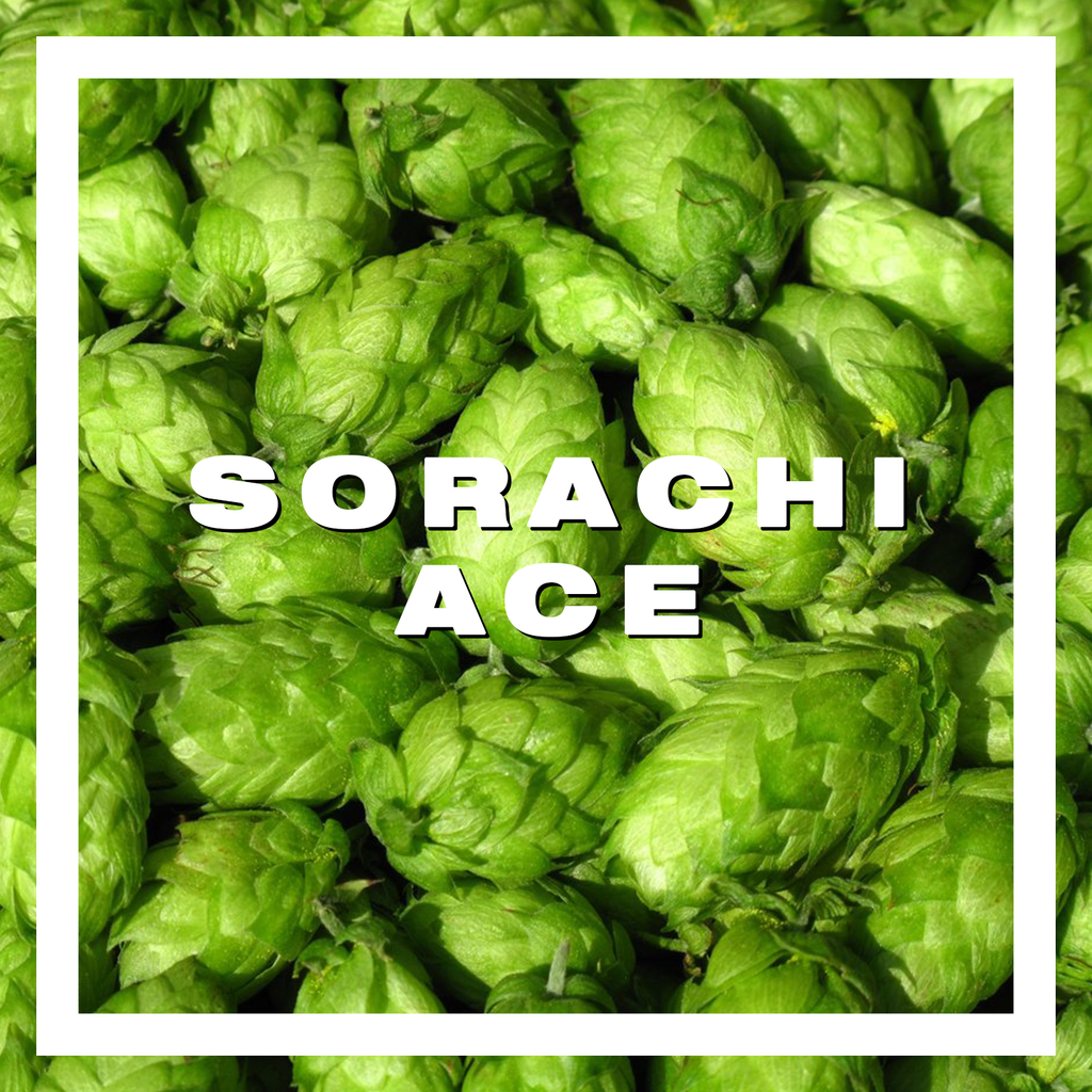 Hops Sorachi Ace Pellets 100gm