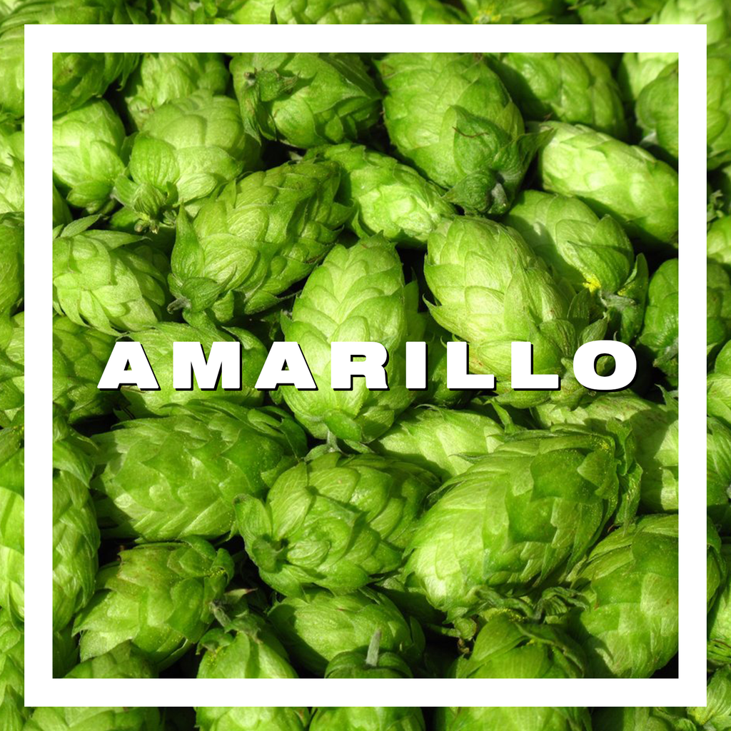 Hops Amarillo Pellets 100gm