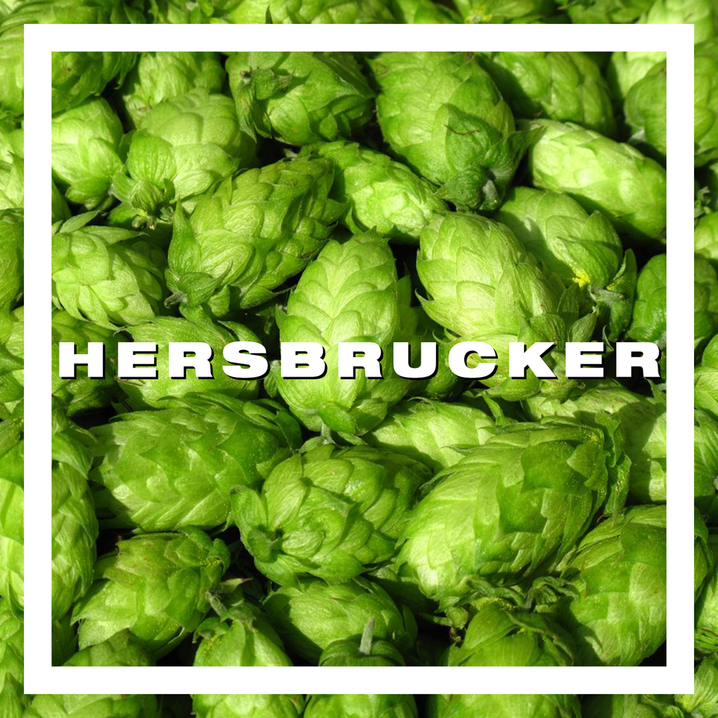 Hops Hersbrucker Pellets 100gm