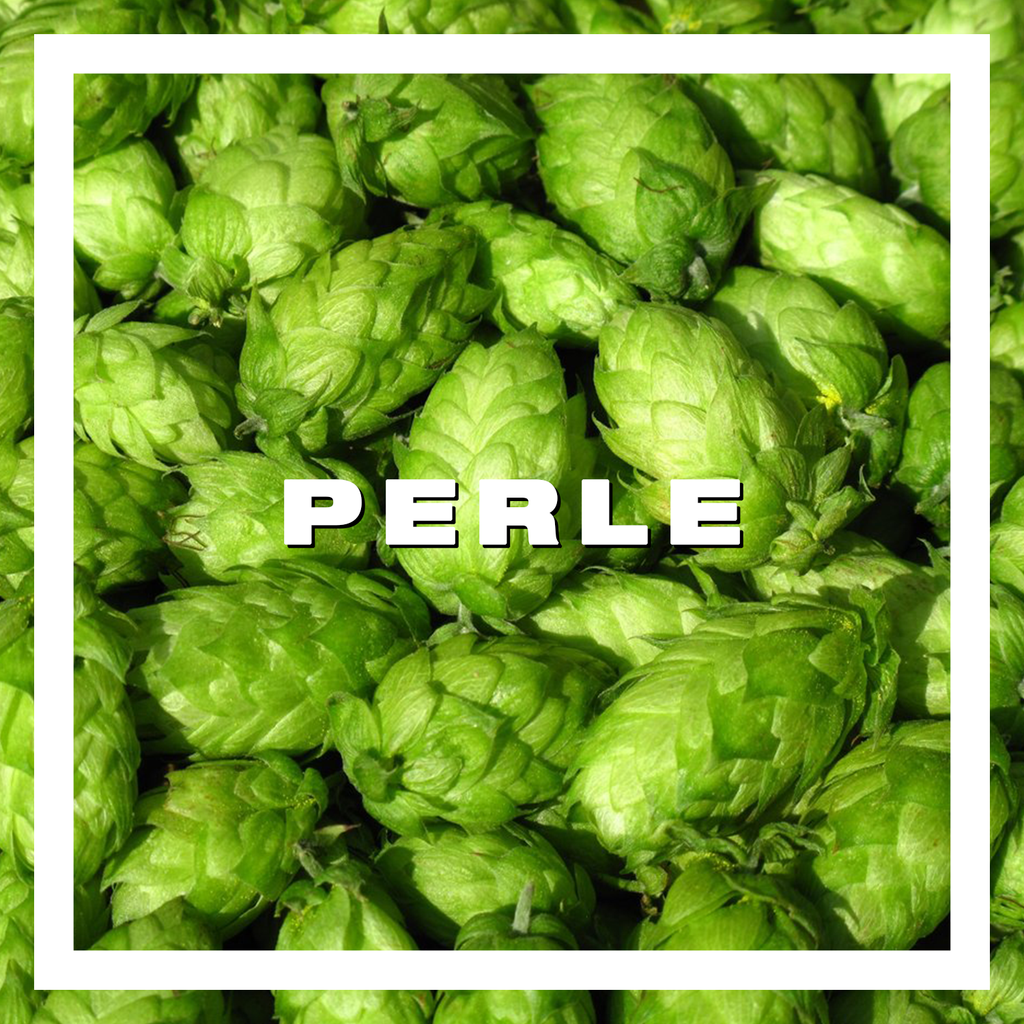 Hops Perle Pellets 100gm