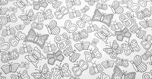 Colour in Butterflies