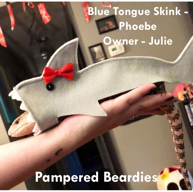Shark Costume: 3 sizes for Boy or Girl