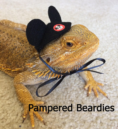 Mouse Ears for your Bearded Dragon, Reptile and Small Animals! Two styles, one size fits most.